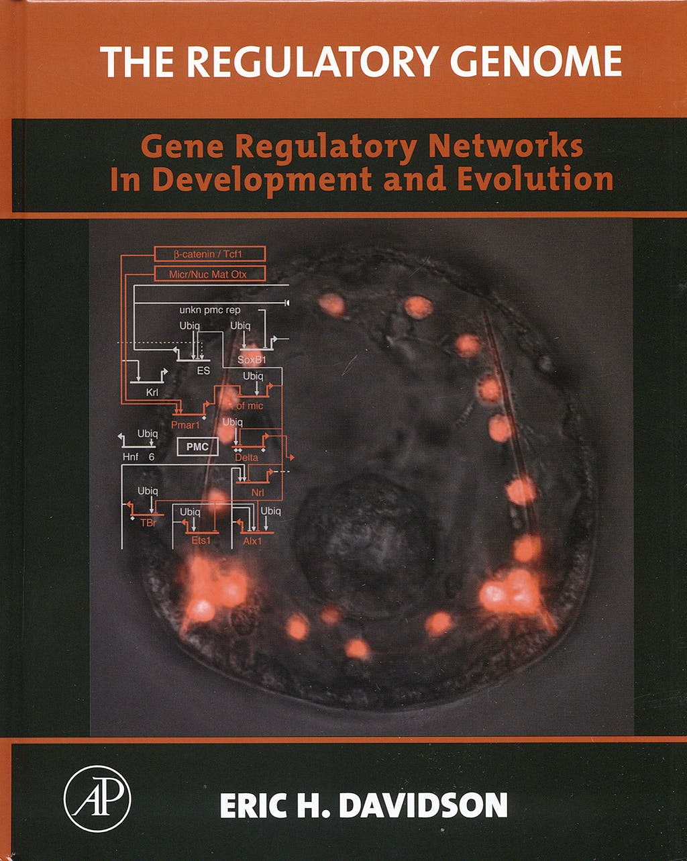 Portada del libro 9780120885633 The Regulatory Genome : Gene Regulatory Networks in Development and Ev