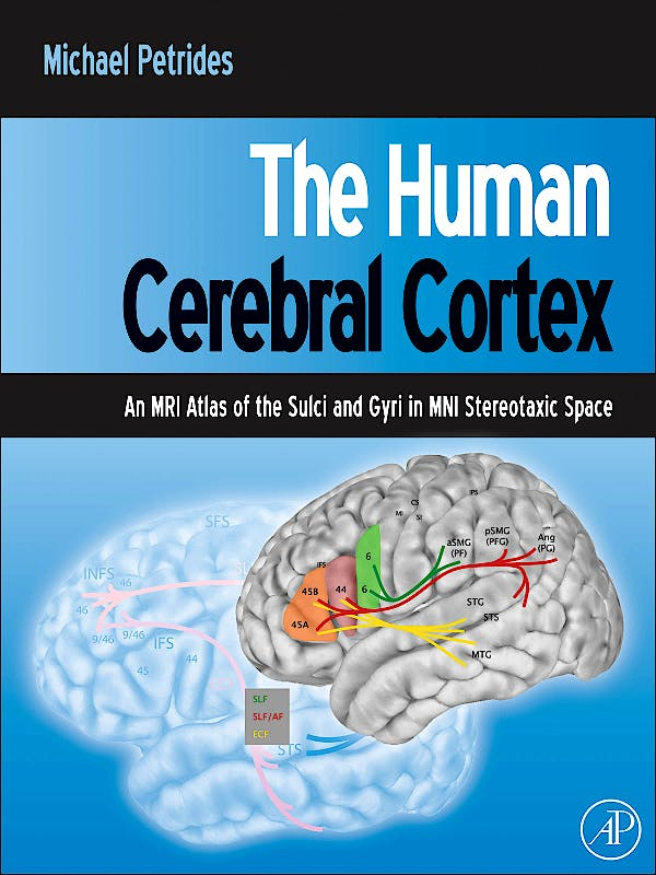Portada del libro 9780123869388 The Human Cerebral Cortex. an Mri Atlas of the Sulci and Gyri in Mini Stereotaxic Space