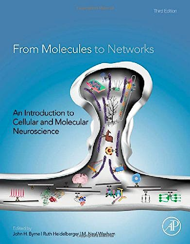 Portada del libro 9780123971791 From Molecules to Networks. An Introduction to Cellular and Molecular Neuroscience