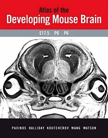 Portada del libro 9780125476225 Atlas of the Developing Mouse Brain at e17.5, P0 and P6