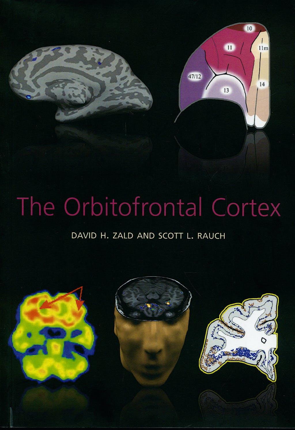 Portada del libro 9780198565758 The Orbitofrontal Cortex