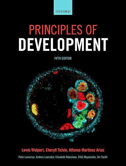 Portada del libro 9780199678143 Principles of Development (Softcover)