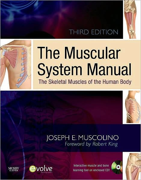 Portada del libro 9780323071635 The Muscular System Manual: The Skeletal Muscles of the Human Body (3rd Ed) + Flashcards (2nd Ed), Package