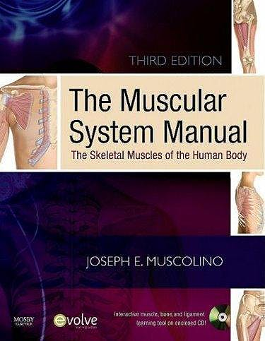 Portada del libro 9780323071659 The Muscular System Manual 3ªed + Text and Coloring Book 2ªed Package. the Skeletal Muscles of the Human Body