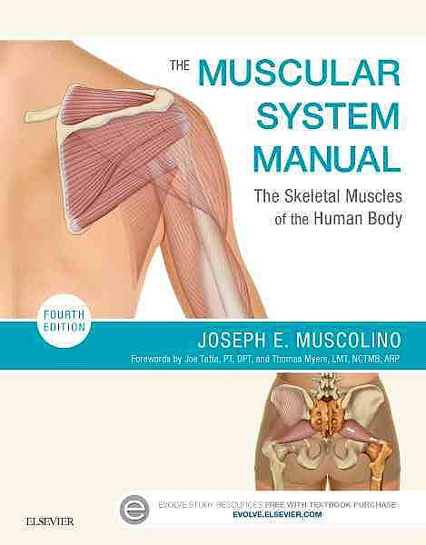 Portada del libro 9780323327701 The Muscular System Manual. The Skeletal Muscles of the Human Body