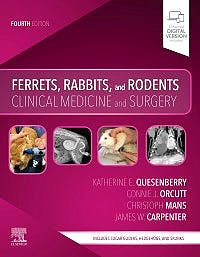Portada del libro 9780323484350 Ferrets, Rabbits, and Rodents. Clinical Medicine and Surgery