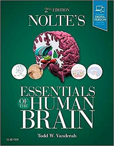 Portada del libro 9780323529310 Nolte's Essentials of the Human Brain (Print and Online)