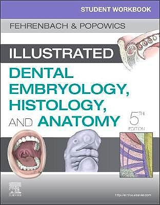 Portada del libro 9780323639903 Student Workbook for Illustrated Dental Embryology, Histology and Anatomy