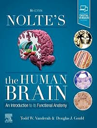 Portada del libro 9780323653985 Nolte's The Human Brain. An Introduction to Its Functional Anatomy (Print + Online)