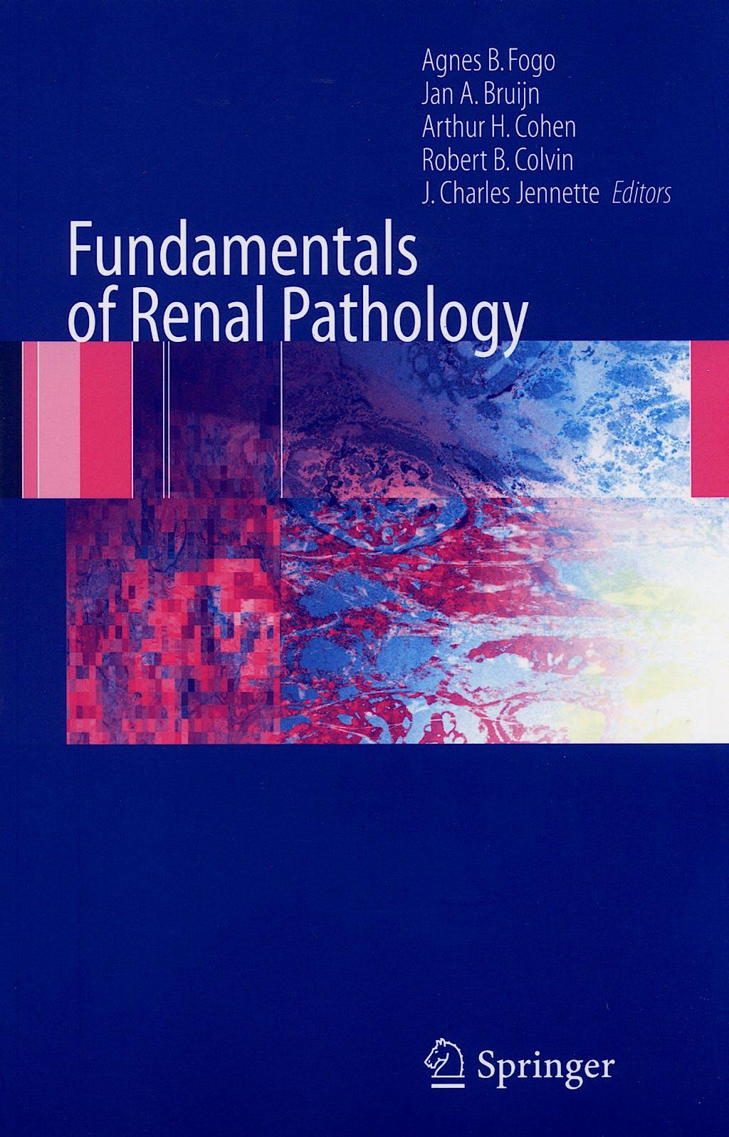 Portada del libro 9780387311265 Fundamentals of Renal Pathology