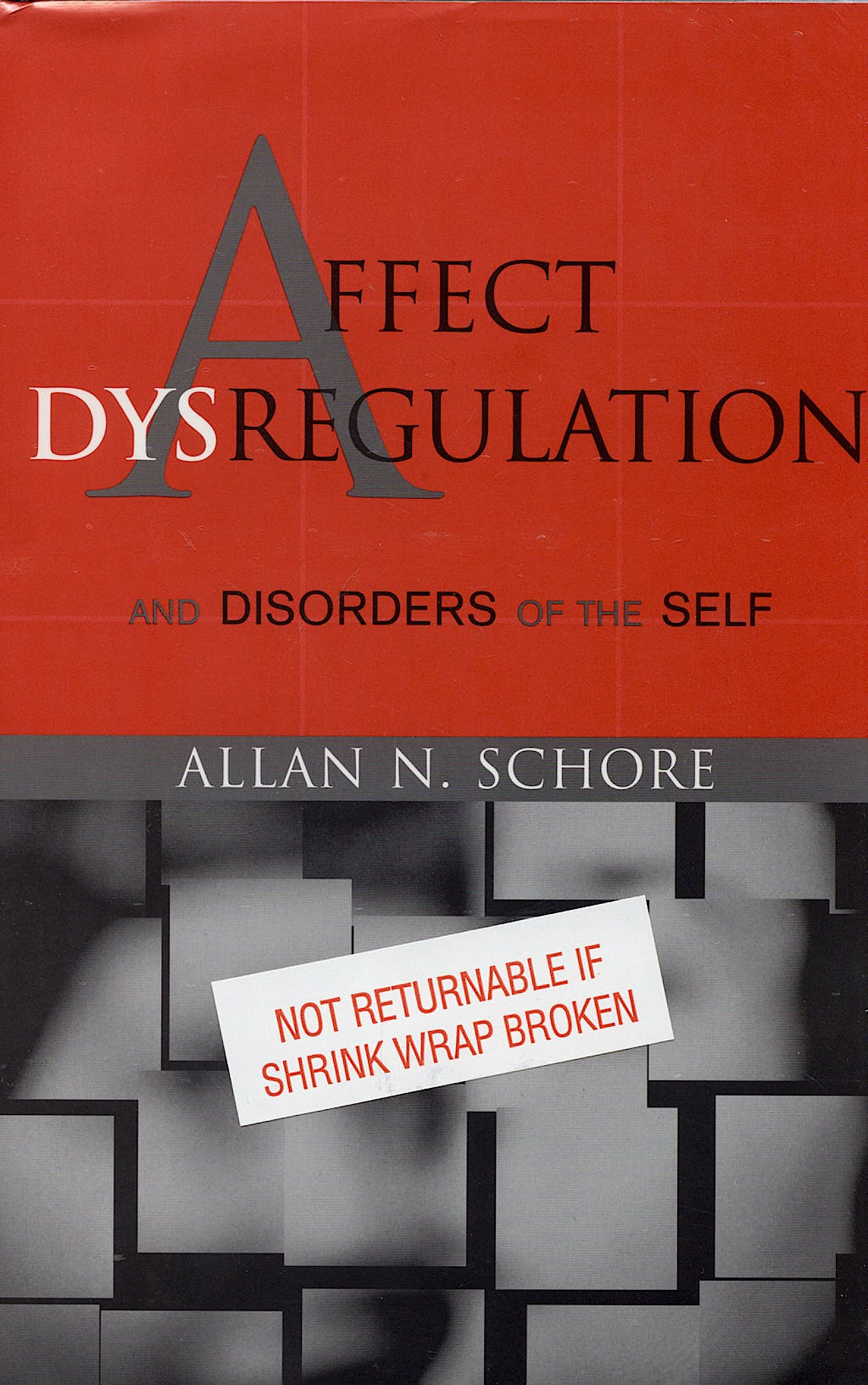 Portada del libro 9780393704082 Affect Dysregulation and Disorders of the Self, 2 Vols.