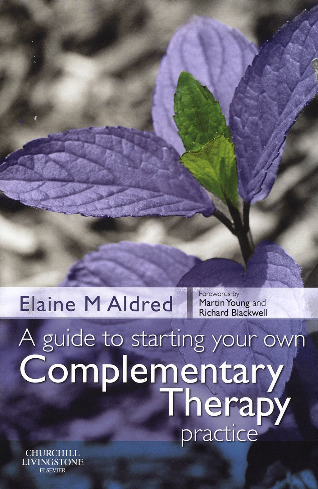 Portada del libro 9780443103094 A Guide to Starting Your Own Complementary Therapy Practice