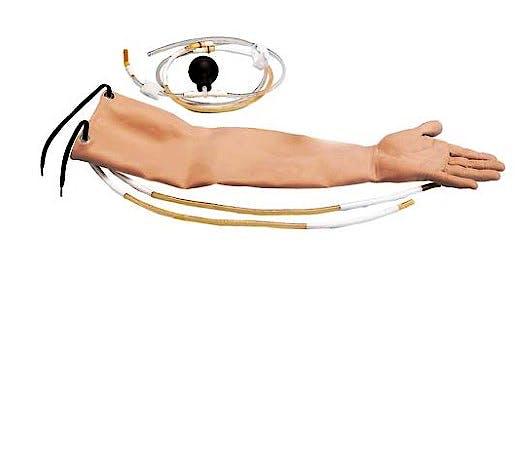 Piel y Arterias para W44022