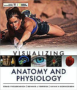 Portada del libro 9780470491249 Visualizing Anatomy and Physiology