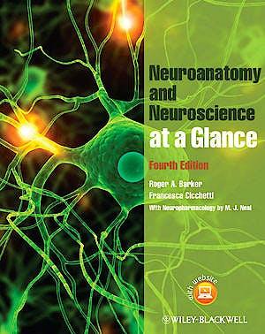 Portada del libro 9780470657683 Neuroanatomy and Neuroscience at a Glance