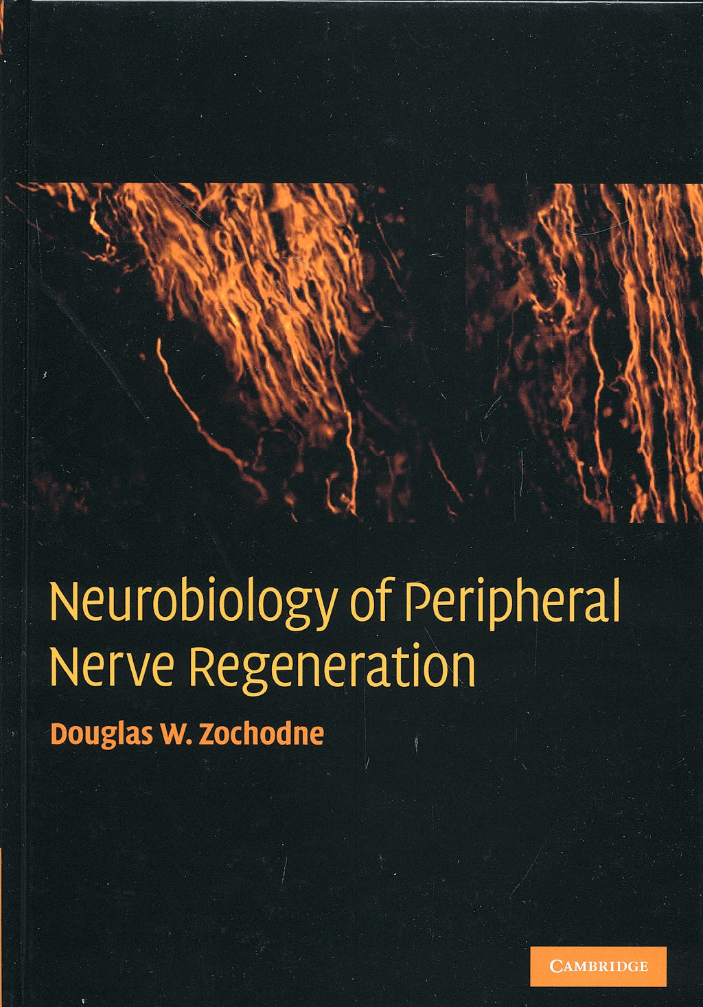 Portada del libro 9780521867177 Neurobiology of Peripheral Nerve Regeneration