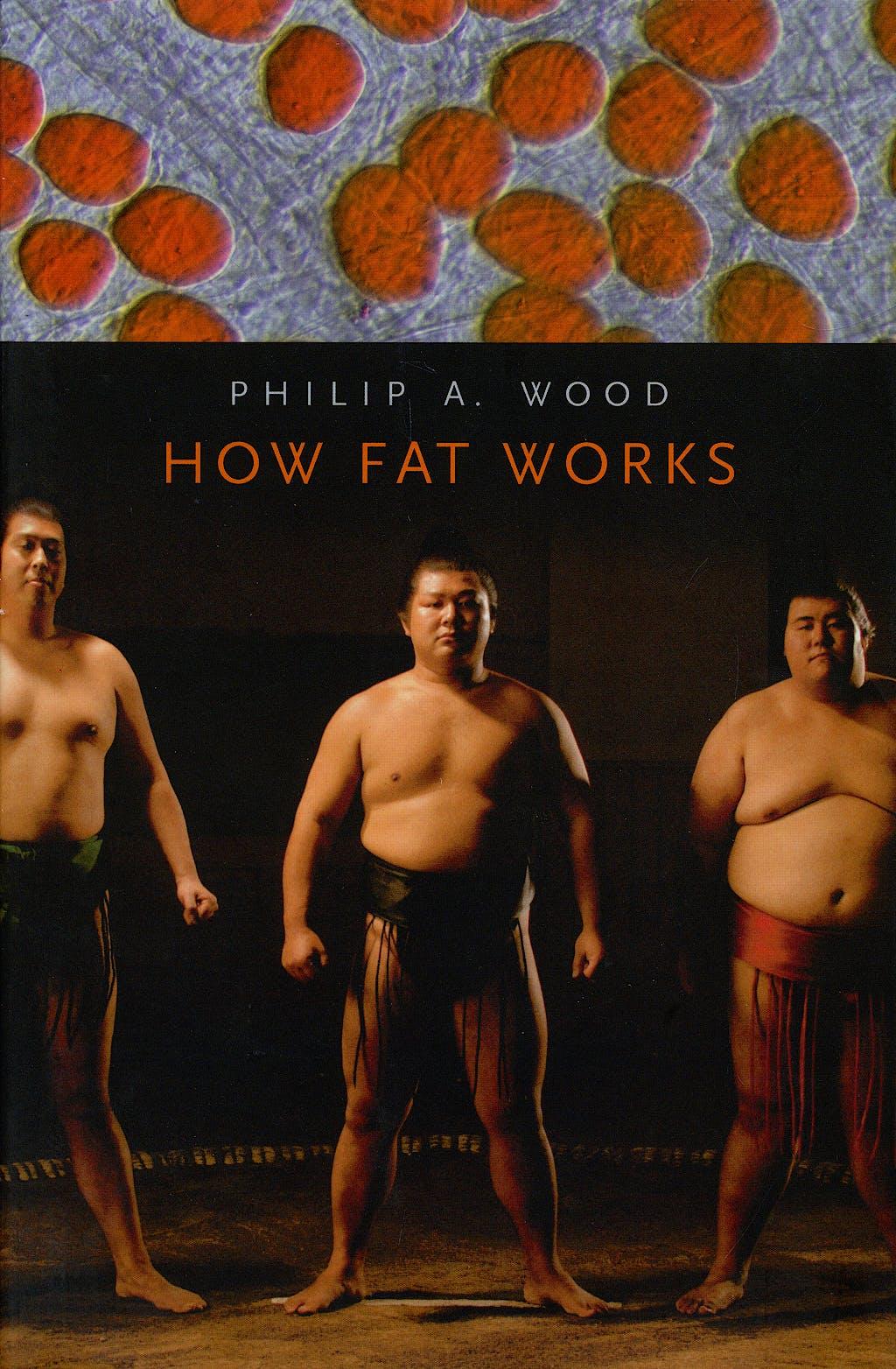 Portada del libro 9780674019478 How Fat Works