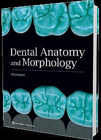 Portada del libro 9780867157703 Dental Anatomy and Morphology
