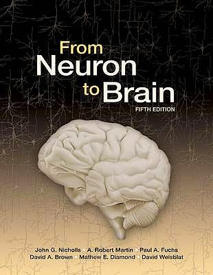 Portada del libro 9780878936090 From Neuron to Brain: A Cellular and Molecular Approach to the Function of the Nervous System