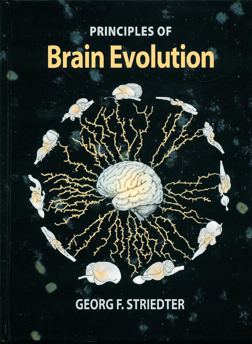 Portada del libro 9780878938209 Principles of Brain Evolution
