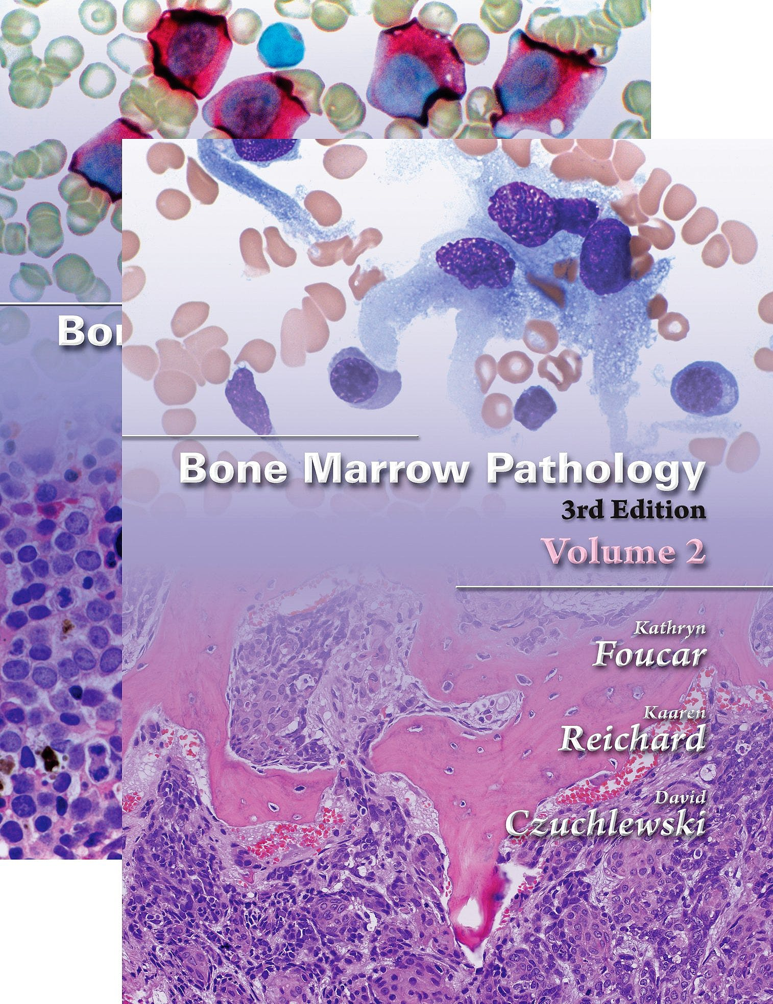 Portada del libro 9780891895688 Bone Marrow Pathology, 2 Vols.