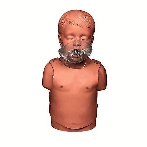 Torso de Niño para Resucitación Cardiopulmonar