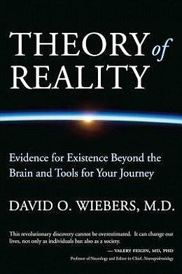 Portada del libro 9780985937522 Theory of Reality. Evidence for Existence beyond the Brain and Tools for Your Journey