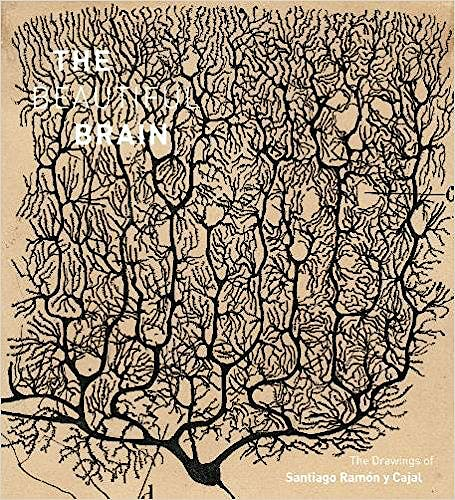 Portada del libro 9781419722271 The Beautiful Brain. The Drawings of Santiago Ramón y Cajal