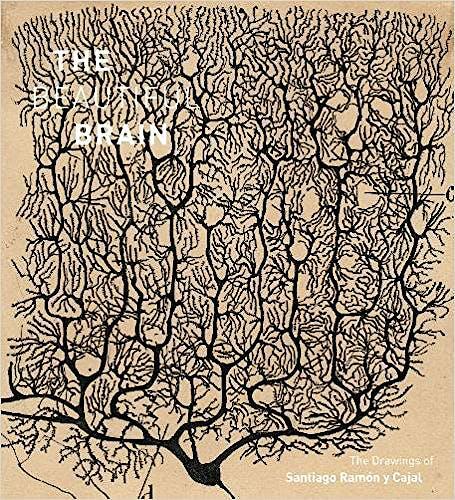Portada del libro 9781419722271 The Beautiful Brain. The Drawings of Santiago Ramón y Cajal