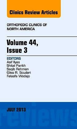 Portada del libro 9781455776023 Issue of Orthopedic Clinics, Orthopedic Clinics of North America, Vol. 44-3