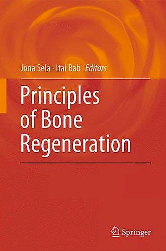Portada del libro 9781461420583 Principles of Bone Regeneration
