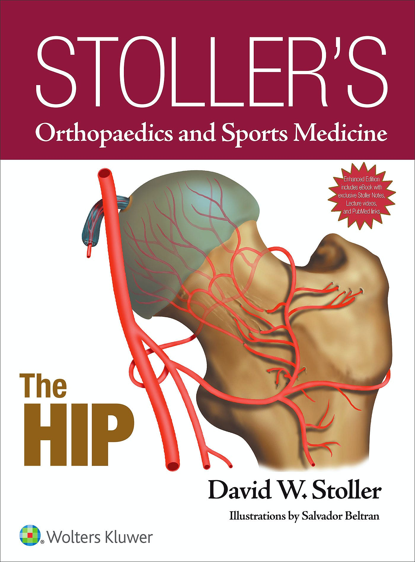 Portada del libro 9781496317605 Stoller's Orthopaedics and Sports Medicine. The Hip
