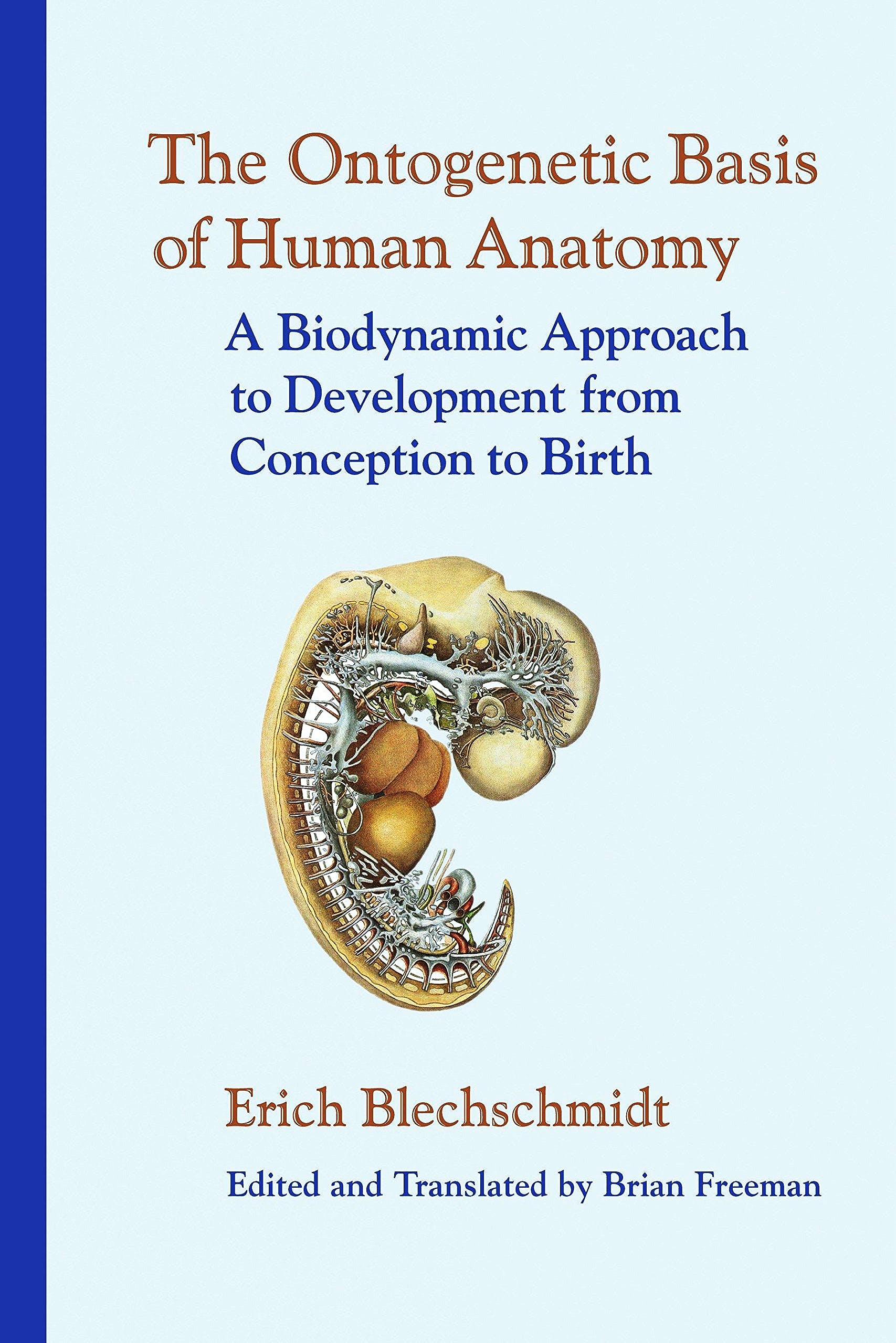 Portada del libro 9781556435072 The Ontogenetic Basis of Human Anatomy. A Biodynamic Approach to Development from Conception to Birth