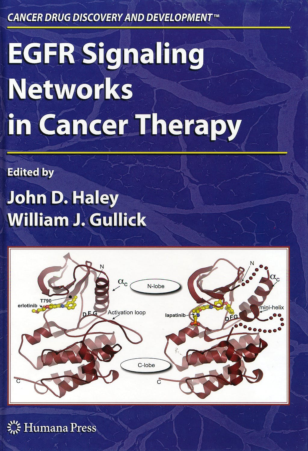 Portada del libro 9781588299482 Egfr Signaling Networks in Cancer Therapy (Cancer Drug Discovery and Development)