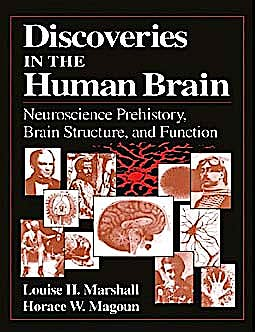 Portada del libro 9781617370342 Discoveries in the Human Brain. Neuroscience Prehistory, Brain Structure, and Function (Softcover)