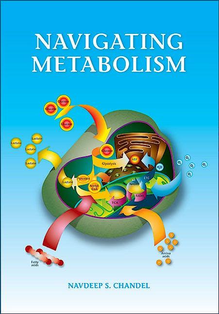 Portada del libro 9781621821298 Navigating Metabolism (Softcover)