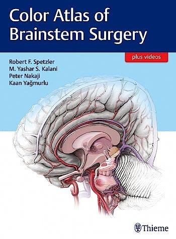 Portada del libro 9781626230279 Color Atlas of Brainstem Surgery + Videos Online