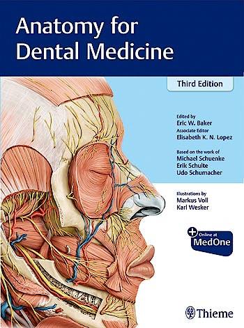 Portada del libro 9781684200467 Anatomy for Dental Medicine