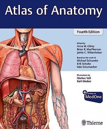 Portada del libro 9781684202034 Atlas of Anatomy