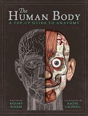 Portada del libro 9781787410589 The Human Body. A Pop-Up Guide to Anatomy