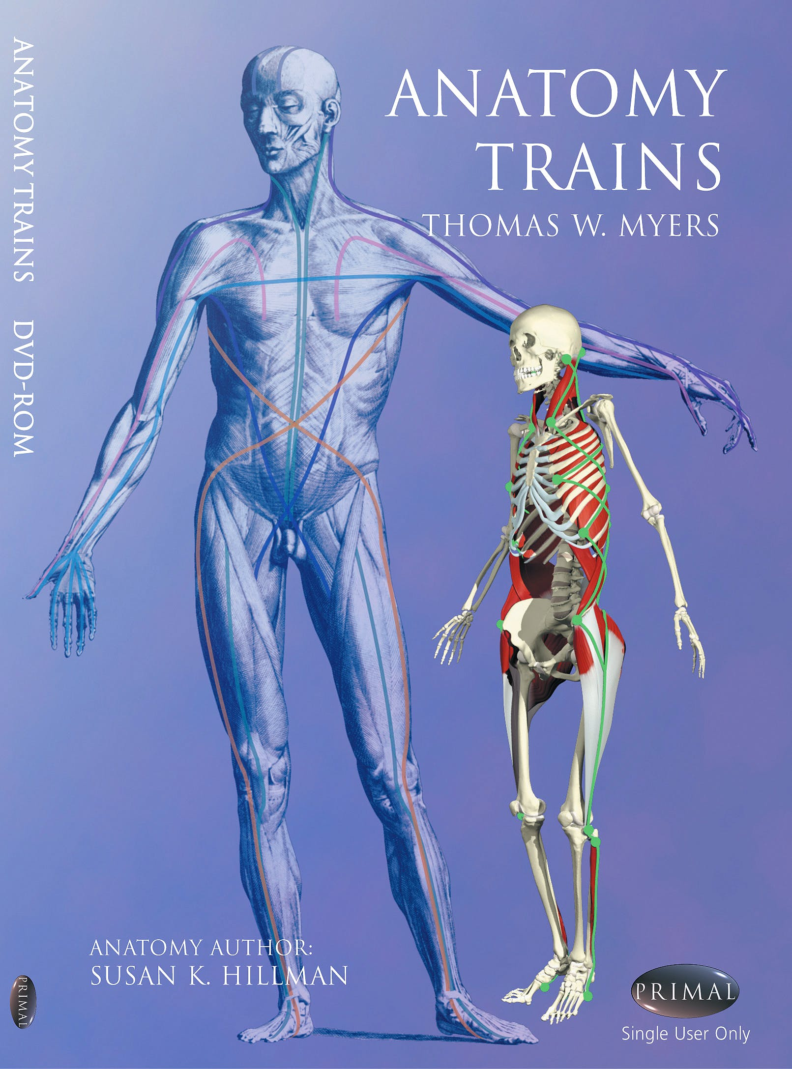 Thomas Myers Anatomy Trains Dvd Topsimages