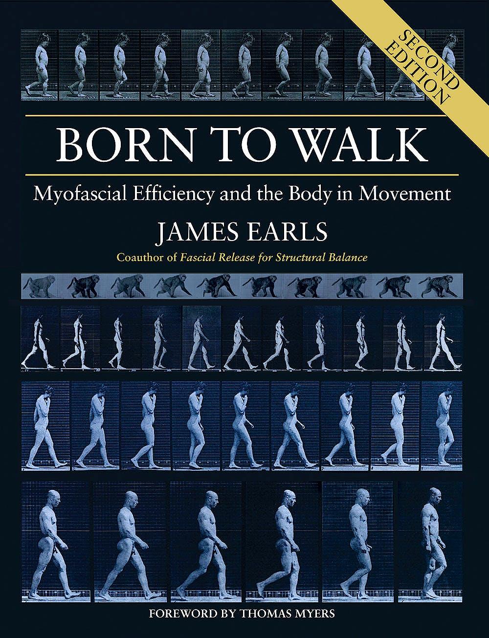 Portada del libro 9781913088101 Born to Walk. Myofascial Efficiency and the Body in Movement