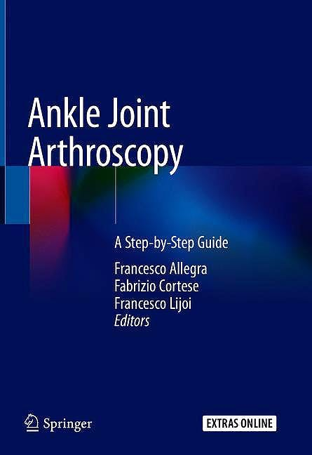 Portada del libro 9783030292300 Ankle Joint Arthroscopy. A Step-by-Step Guide