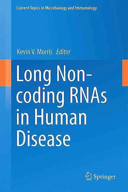 Portada del libro 9783319239064 Long Non-Coding RNAs in Human Disease