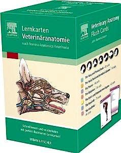 Portada del libro 9783437570049 Lernkarten Veterinäranatomie