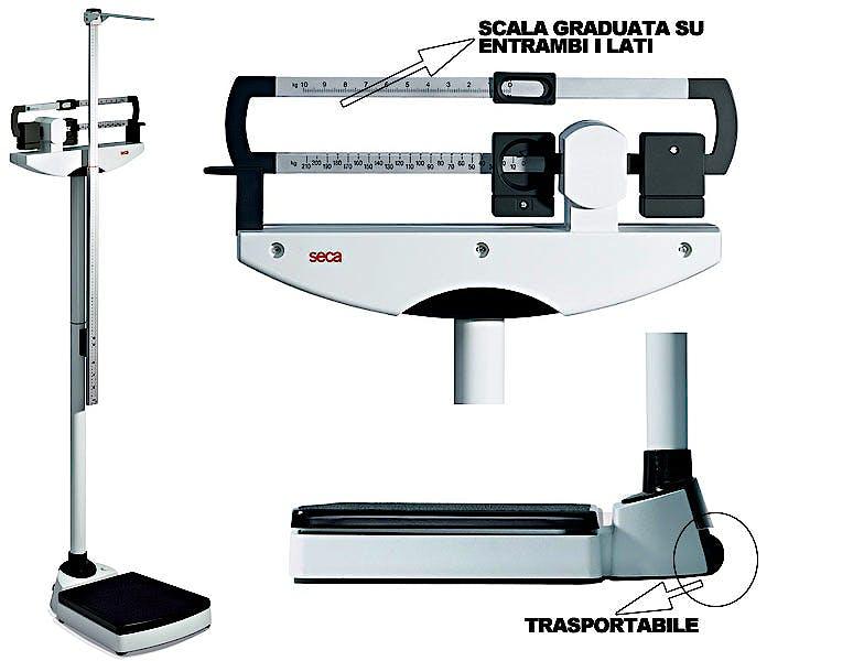 Báscula Mecánica de Columna Clase III SECA Mod. 711 con Tallímetro SECA Mod. 220