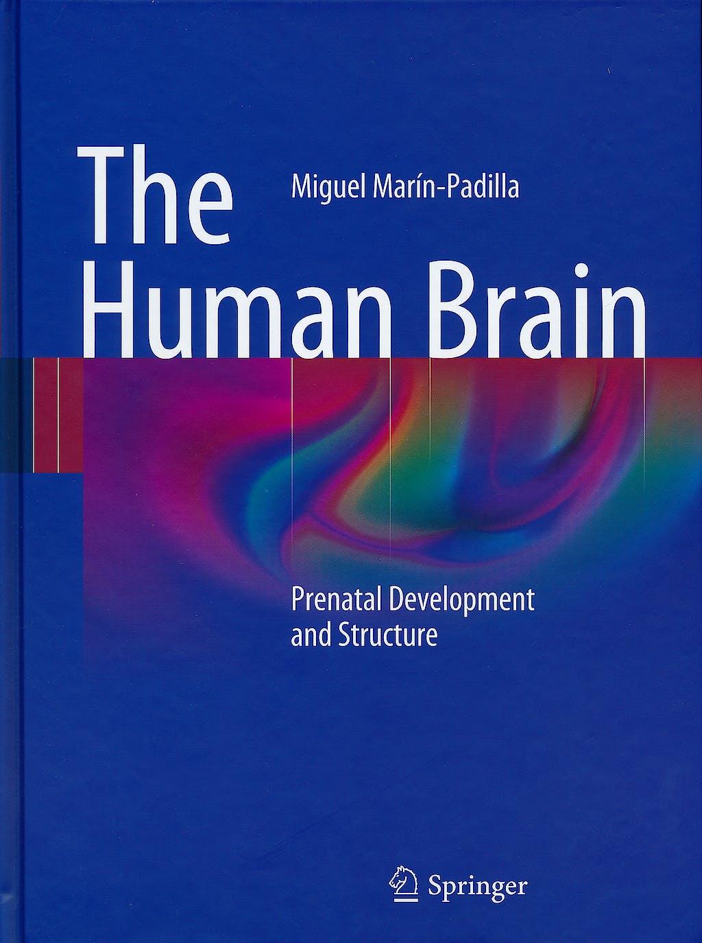 Portada del libro 9783642147234 The Human Brain. Prenatal Development and Structure