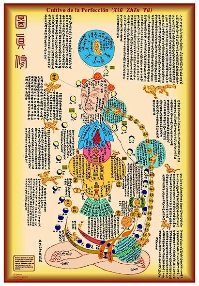 Lámina Cultivo de la Perfección (Xiu Zhen Tu), 35 X 50 cm., Plastificada Brillo