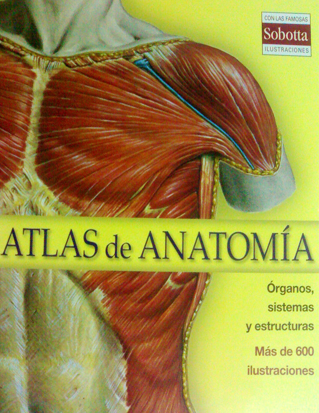 Producto: Sobotta Atlas de Anatomía. Órganos, Sistemas y Estructuras
