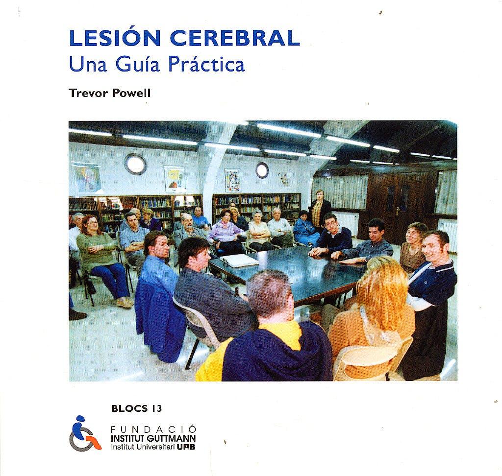 Portada del libro 9783834801579 Lesion Cerebral: Una Guia Practica